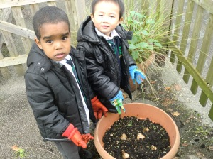 Mohnad and Harel planting our bulbs