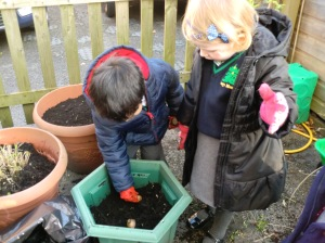 Jacob and Roisin planting our bulbs