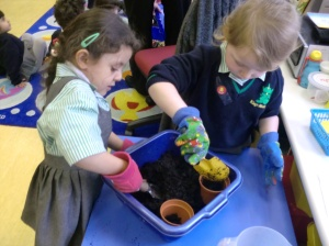 We planted beans after reading 'Jack and the Beanstalk'