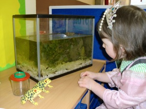 We've been watching our tadpoles closely!